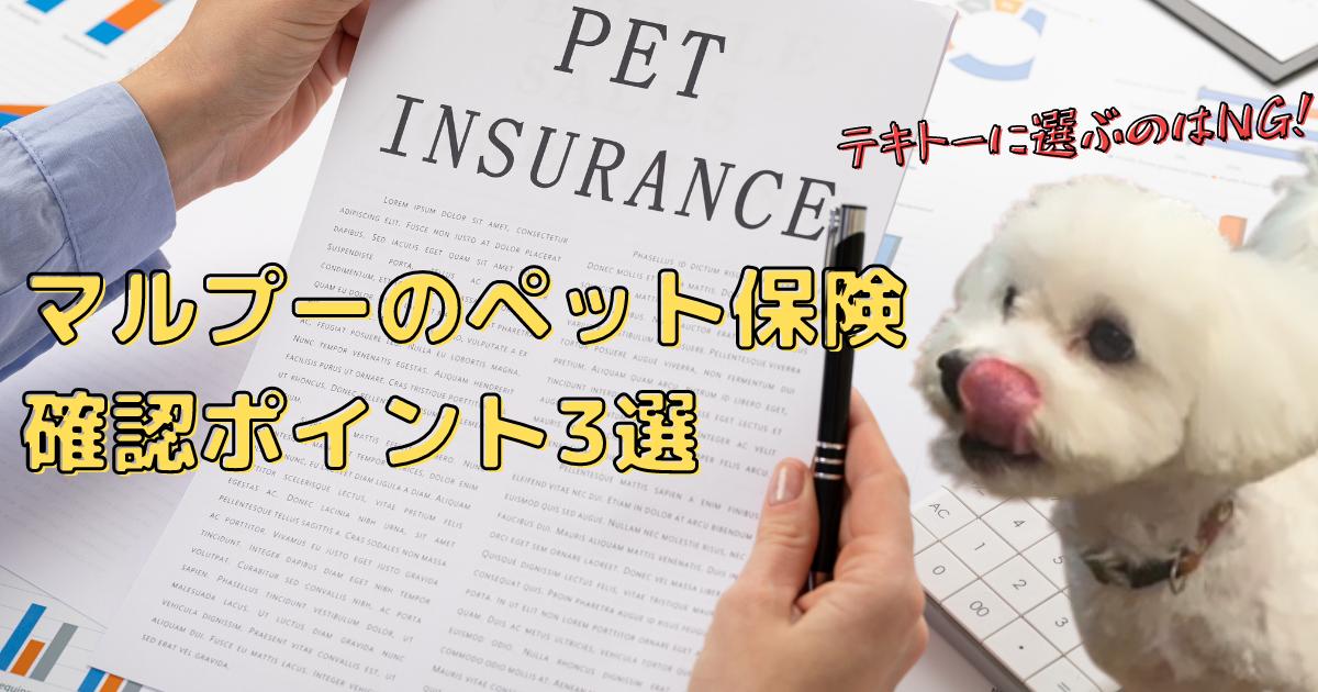 マルプーのペット保険
